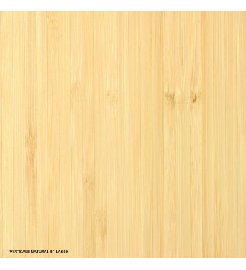 DYNAMIC COLLECTION - PUREBAMBOO -